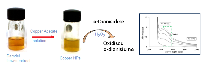 Copper Nanoparticles catalyzed oxidation