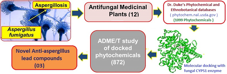 antifungal compounds docking