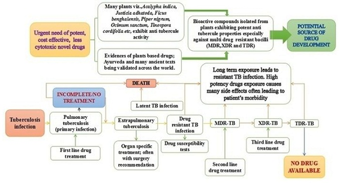 Ayurvedic medicine for tuberculosis