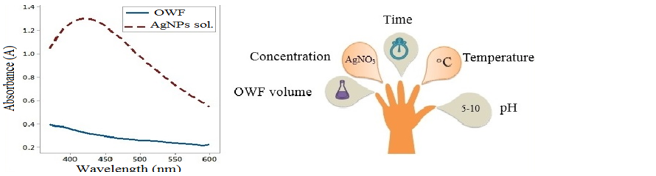 Silver nanoparticle synthesis olive industry waste water