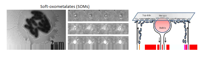 Soft oxometalates