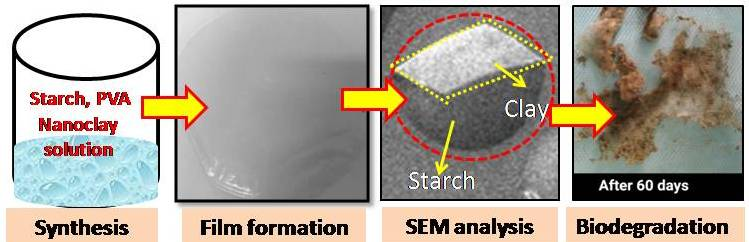 Starch Nanoclay composite