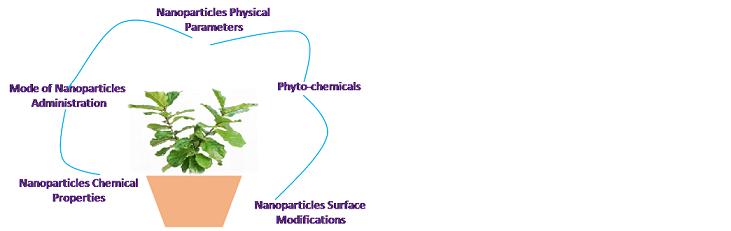 herbal nanomedicine review