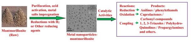 montmorillonite nanocatalysts