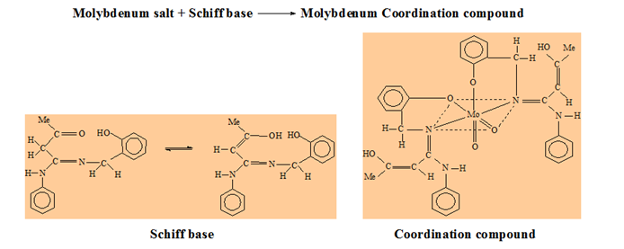 Mo schiff base complexes